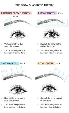 Perfect eyebrow measure