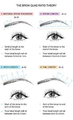 Perfect eyebrow measure