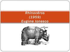 Rhinocéros -  Eugène