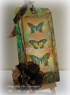 Butterfly_050612 copy