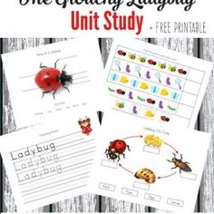 FREE Grouchy Ladybug Unit Study and Printable Pack