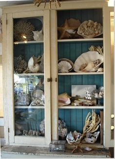 Love the blue painted interior of the cabinet! Shows off the beautiful shells--light the cabinet and what a show for summer nights! Coastal Cottage, Coastal Homes, Coastal Style, Coastal Living, Coastal Decor, Bohemian Beach Decor, Cottages By The Sea, Beach Cottages, Shell Collection