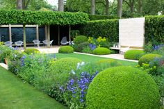 I was right about some things concerningthis year's Chelsea Flower Show; the weather was better; most designers defaulted to the tried and tested formula of multi-stemmed trees underplanted …