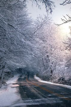 Iced Over Road