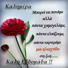 Good Morning Happy, Happy Sunday, Beautiful Pink Roses, Good Week, Greek Quotes, Good Night, Verses, Greeting Cards, Words