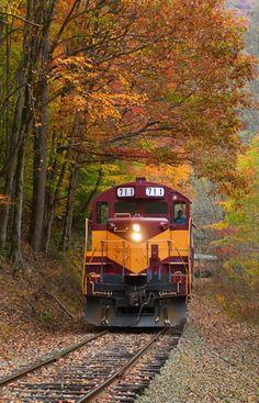 Take the train through the beautiful Smoky Mountains.