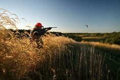 Quail & Pheasant Hunting Illinois: Wild Quail & Pheasant Upland Bird Hunts | Heartland Lodge