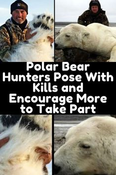 The number of polar bears are decreasing due to hunters killing them for their own personal amusement and now, some are even encouraging it. Children Photography, Nature Photography, Text Abbreviations, Police Memes, Water Art, Nature Tree, Polar Bears, Cute Baby Animals, Beautiful Gardens