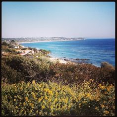 The views in Malibu are unreal! #beach #malibu #ocean #californiadreamin