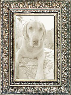 Silver Ornate Picture Frame — made in USA by             M U S E U M F A C S I M I L E S