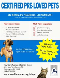 """September 7 - HELP us find as many loving homes for adoptable pets as we can! Please join the Certified Pre-Loved Pets event ($12 adoption fees for 12 hours) and invite a few friends. By no fault of their own, pre-loved pets are waiting in droves for their new, permanent homes. We are extending our adoption hours (9 am – 9 pm) for this special day to encourage adopters to come and meet their """"new-to-them"""" family pet."""