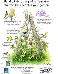 Garden Yard Ideas, Garden Projects, Backyard Ideas, Permaculture, Unique Gardens, Garden Features, Backyard Birds, Small Birds, The Ranch