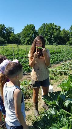 Farmer Erika demonstrating zucchini harvest techniques