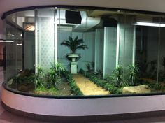 A display garden with unique plants that grows and lives in artificial lighting, behind a glass wall.