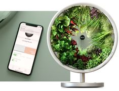 Rotofarm: A Beautiful NASA-Inspired Indoor Garden | Indiegogo