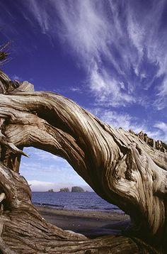 Flores Island, Clayoquot Sound