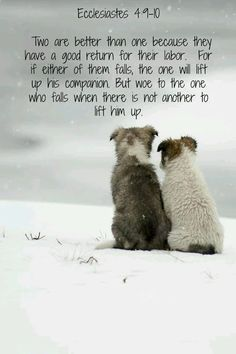 """""""Again, if two lie together, then they have heat: but how can one be warm alone?"""" Ecclesiastes 4:9-11"""