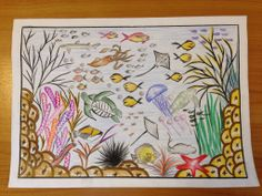 Lauha Mohamed - Age 13 Drawing Competition, Ocean Day, Marine Conservation, Oceans Of The World, Age, Drawings, School, Sketches, Drawing