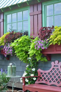 Window boxes and red bench by Potting Shed | homeiswherethboatis.net #garden #flowers