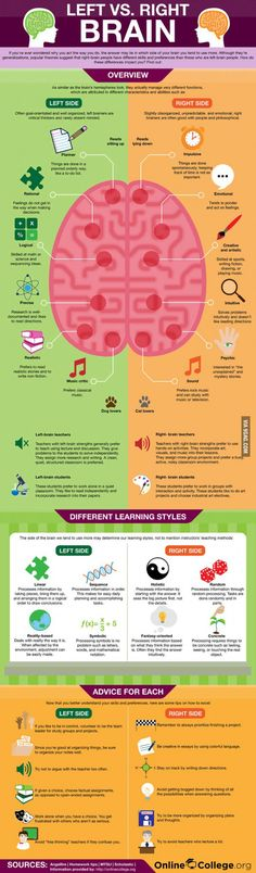 Right brain and left brain infographic