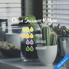 Clean Summer Kitchen - Essential Oil Diffuser Blend