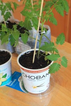 Happy Earth Day! Here are some clever ways to reuse your containers.