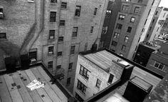 Atelier Robert Doisneau | Site officiel  //  Depuis l'atelier d'Arnold Newman NY 26avril 1981