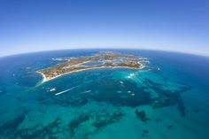 Rottnest Island, 19km off the coast of Perth, Western Australia