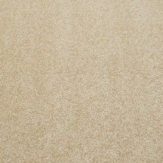 Best 25 Cream Carpet Ideas On Pinterest Cream Carpet