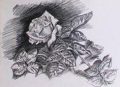 Resultado de imagen para dibujos en carboncillo