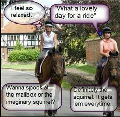 http://www.facebook.com/pages/Equestrian-Lifestyle-Magazine/92823766751