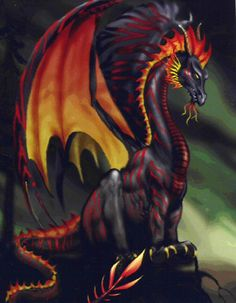 Image result for magical dragons