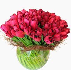 buchete din lalele in vaza Flower Arrangements, Flowers, Plants, Arrangement
