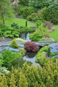 Lush spring park