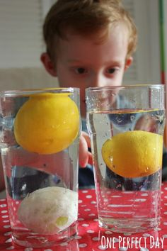 Playful Science: Sink or Float Experiment with Lemons - One Perfect Day