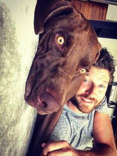 Country Music Stars, Country Singers, Country Men, Country Girls, Brett Eldredge, Imaginary Boyfriend, The Boogie, Funny Animal Photos, Attractive Men
