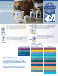 Scentsy 2015 Laundry Line for Fall Including Clothing Conditioner, Dryer Disks, Washer Whiffs, and Laundry Liquid. You can get yours at  https://lynnbouse.scentsy.us Scentsy Laundry 2015