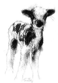 Lamb, Artist Sean Briggs producing a sketch a day, prints available at https://www.etsy.com/uk/shop/SketchyLife  #art #drawing #http://etsy.me/1rARc0J #lamb