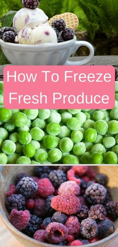 Freezing fresh produce is easy to do and rewarding. Learn how to freeze your harvest for later use.