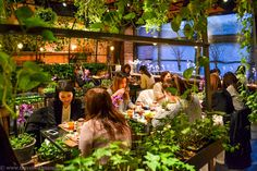 Aoyama Flower Market Tea House in Tokyo. Read fool review on www.travelwithnanob.com #dessert #travel #tokyo #japan