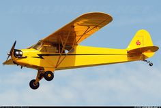 The Piper Cub J-3 aircraft = it might be a good idea if some of the group had a pilots license and could fly recon missions with a small aircraft like this one.