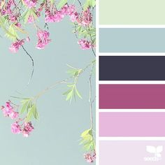today's inspiration image for { flora hues } is by @anamarques210376 ... thank you, Ana, for another beautiful #SeedsColor image share!