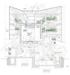 plan et coupe transversle visualiser les murs porteurs, les espaces et les longueurs, base de construction feutre fin noir, aplats gris et verts