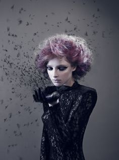 http://www.mymodernmet.com/profiles/blogs/2011-international-photography-award-winners-non-pro