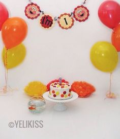 First birthday Elmo inspired smash cake photo shoot (July 2016)
