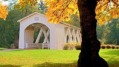 Autumn leaves at the Stayton-Jordan Covered Bridge in Stayton, OR