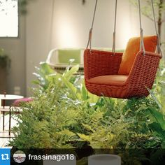 #Repost @frassinago18 with @repostapp.