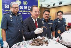 KOTA KINABALU: Some 8,000kg of pangolin scales worth RM100mil in the illicit trade business were seized by Customs at the port here.