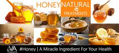 #Honey | A Miracle Ingredient For Your Health - Nectare crafted by our bee friends, honey contains sugar, certainly, but it is much better for health. In addition, this excellent condiment...