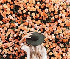 Pinterest || Hannah Perucca
